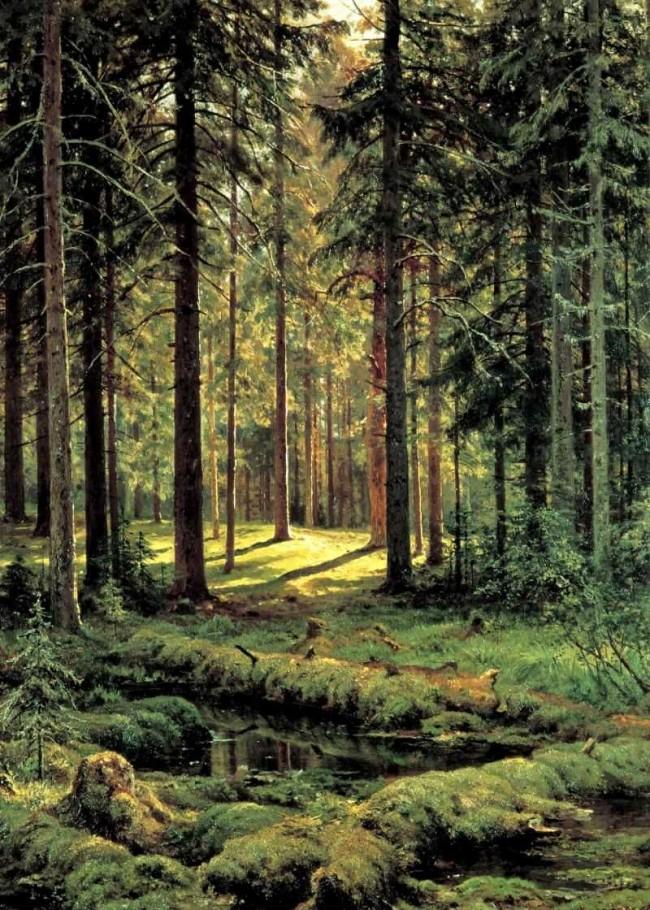 """Сочинение по картине: Шишкин - """"Хвойный лес. Солнечный день"""""""